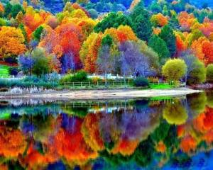 colorful fall