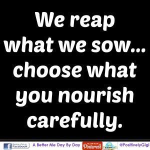 we reap what we sow choose carefully