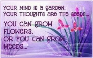 your mind is garden grow flowers or weeds