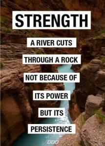 a river cuts a rock persistence