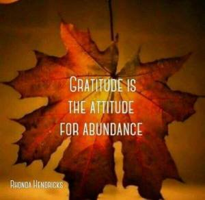 gratitude is the attitude for abundance