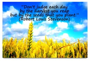 dont-judge-each-day-by-the-harvest-you-reap-but-by-the-seeds-that-you-plant-8