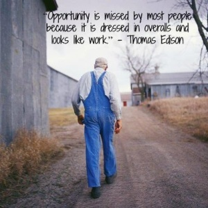opportunity is missed by most - edison