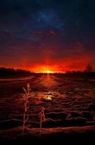 horizon dark red sunrise