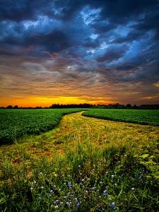 horizons pasture pathway