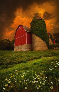 horizon barn and silo