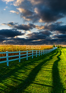 horizon shadows and fence post