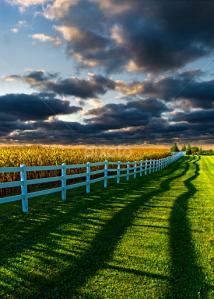 horizon shadows and fence post