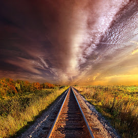 horizons tracks and brown clouds