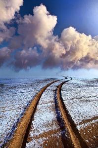 horizons frosty tracks