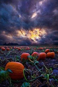 horizon halloween