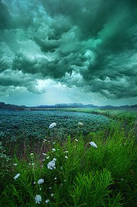 horizons a-dark-day-phil-koch