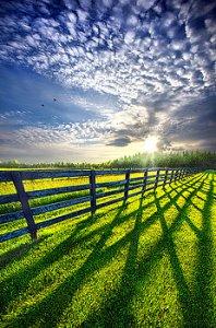 horizons - fence blue sky