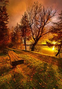 horizon autumn bench come-home-phil-koch