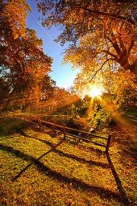 horizon fall day