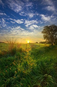 horizons heart-belongs-phil-koch