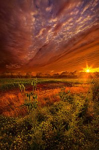 horizons the-never-ending-story-phil-koch