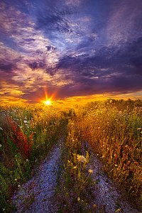 horizons the-shortcut-phil-koch