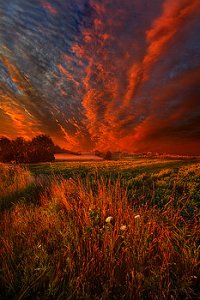 horizons what-about-now-phil-koch