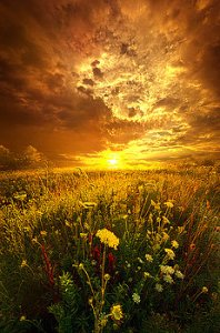 horizons and-in-a-whispered-moment-she-was-gone-phil-koch