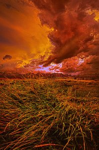 horizons firelight-phil-koch