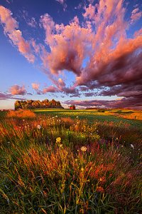 horizons -like-going-to-heaven-with-your-feet-still-on-the-ground-phil-koch