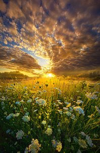 horizons-spiritual-calling-phil-koch