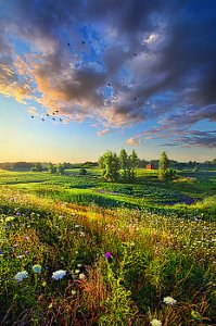 horizons taking-a-time-out-phil-koch