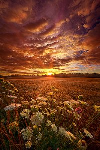 horizons the-goodness-of-the-lord-phil-koch