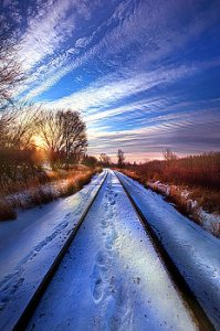 horizons the-polar-bear-express-phil-koch