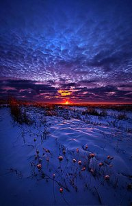 horizons all-the-dreams-i-used-to-know-phil-koch