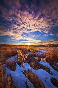 horizons we-cannot-let-our-angels-go-phil-koch