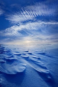 horizons winter-born-phil-koch