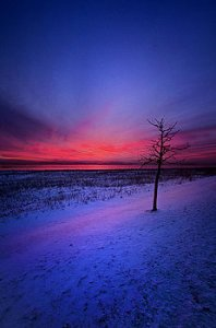 horizons an-audience-of-one-phil-koch
