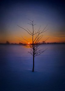 Horizons dont-give-up-on-me-phil-koch