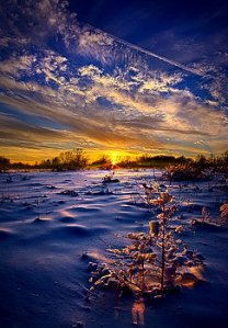 horizons no-regrets-phil-koch