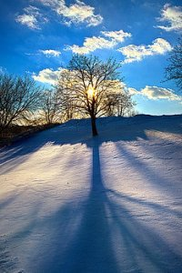 horizons winter-phil-koch