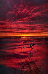 horizons a-breathless-kiss-phil-koch