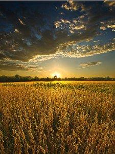 horizons brilliance-phil-koch