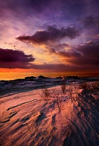 horizons if-you-see-through-my-eyes-phil-koch