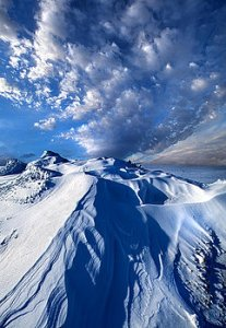 horizons king-of-the-hill-phil-koch