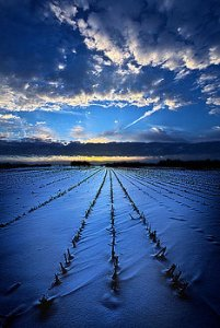horizons lines-of-sight-phil-koch