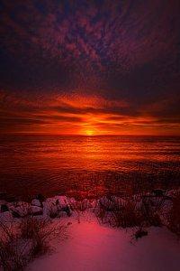 horizons loves-pure-light-phil-koch