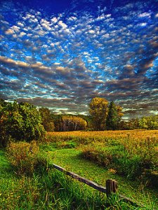 horizons meadow-light-phil-koch
