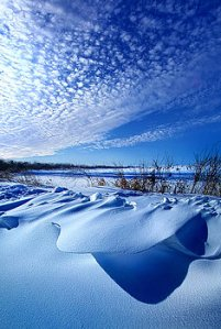 horizons winter-sticks-its-tongue-out-phil-koch