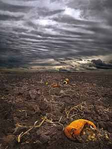 horisons left-behind-phil-koch