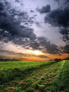 horizon the-first-horizon-phil-koch