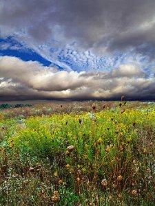 horizons autumn-skies-phil-koch