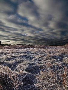 Horizons coffees-desolation-phil-koch