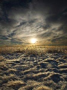 horizons instance-phil-koch